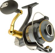 Shimano TwinPower 8000SW-A