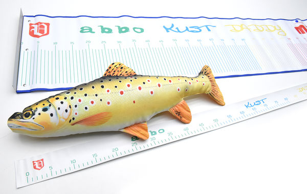 Vision FISH measure, 138 x 6cm